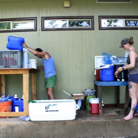 Fish excretion station at Gump Research Station, Moorea