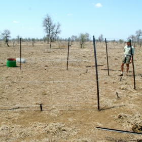 Building herbivore exclosures at the end of the dry season