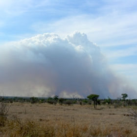 Big fires can make their own weather systems