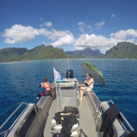 View from our surface interval on the North shore of Moorea
