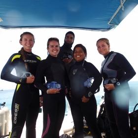 Team Parrotfish!