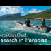Embedded thumbnail for Mo'orea Coral Reef: Research in Paradise