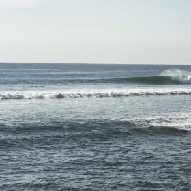The Wave (photo Sam Shimizu-Jones)